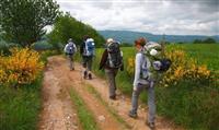 COMPOSTELLE : Un site pour le GR® 65 en Aveyron